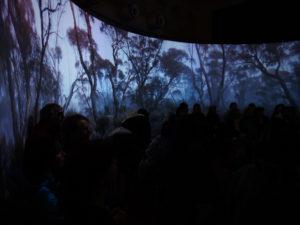 Ngurini (Searching) installation. Photo by Tony Kearney.